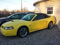 2001 Ford Mustang GT Convertible #1512