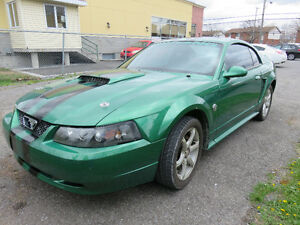 Ford Mustang SVT, 3,8 litres