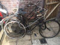 3 vintage ladies bicycles