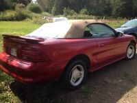 Mustang convertible - recently reduced