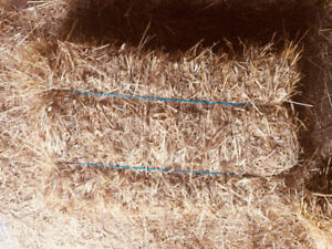 Hay Bales - Decorative or for Feed
