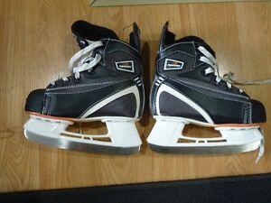 PowerTek Skates