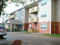 Senior Friendly, Prof Adult 2 Bdrm in new Building with Elevator
