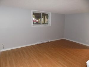 Great 2 bedroom apartment Available January 1st!!!!! Kitchener / Waterloo Kitchener Area image 3