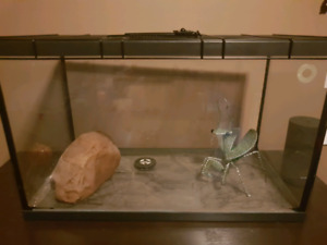 5G glass tank with reptile lid