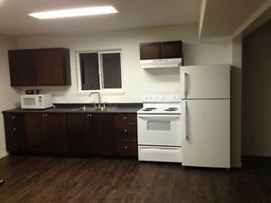 For rent newly renovated basement In south quesnel