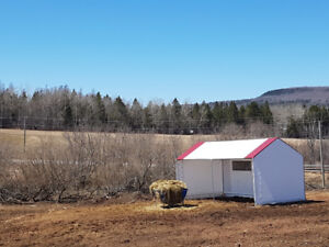 Horse Boarding - Pasture or Stall, outdoor rings, indoor + more!