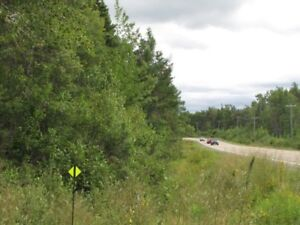 167 Acres of wood land , Cocagne River Runs through the land .