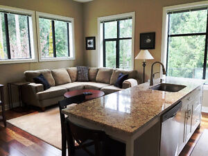 Ideal for MILITARY IR - Includes Utilities, Beautiful,1 bdrm+Den