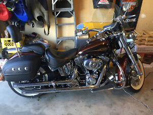 2009 Harley soft tail deluxe