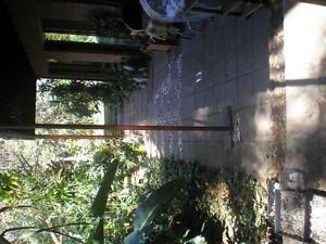 SPACIOUS  40 sqm. FF GARDEN STUDIO LANE COVE Lane Cove Lane Cove Area Preview