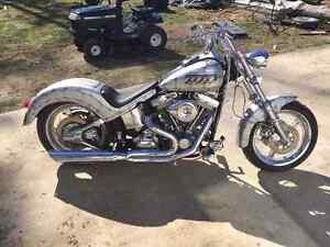 1995 Custom Softail