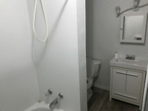 1 Bedroom Apartment in South Porcupine