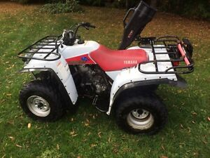 yamaha timberwolf 250 buy or sell used or new atv in ontario kijiji classifieds. Black Bedroom Furniture Sets. Home Design Ideas