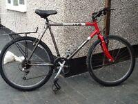 Scott peak mountain bike