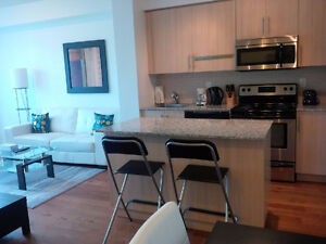 Oct 14: Furnished Downtown 1 Bed + den @ Maple Leaf Sq - Union