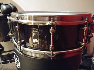 Snare Black Panther