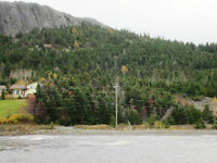 Harbour Drive - Colliers, NL - MLS# 1109746