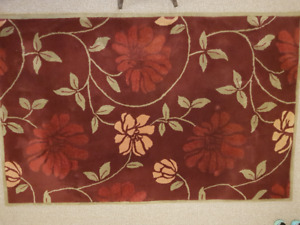 Area Rug - Great Condition - 5' x 8' (152cm x 144cm)