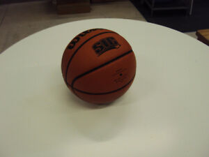 Wilson Youth-Size Basketball, barely used