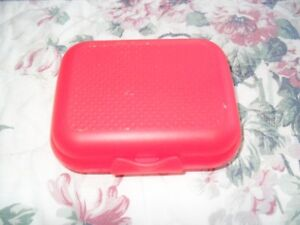 """Small """"Tupperware"""" Container"""