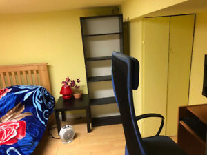 Large one bedroom near High Park   in the basement
