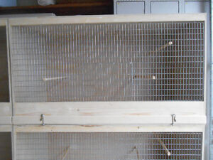 Canaries and Breeding Cages