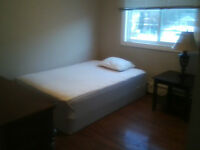 Roomate wanted for two bedroom Apartment (no couples)