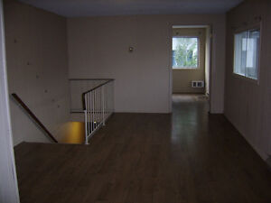 DOWNTOWN ONE BEDROOM APARTMENT FOR RENT