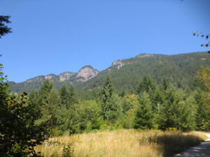 Need somewhere to escape to? Amazing 2.5 acre property