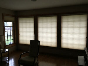 Hunter Douglas Duette Window Shades