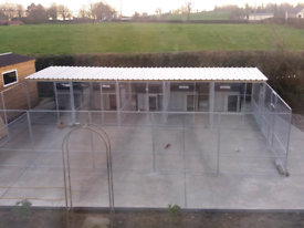Large dog pens galvanized panels and cages