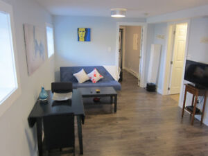 Modern, clean, bright 1-BR fully furnished apartment avail. Sept