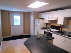 FOR RENT 1 bedroom apartment 10 mins from Pembroke on Quebec sid