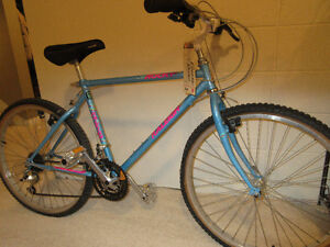 MOUNTAIN BIKE 1990's CLASSIC