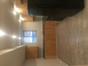 BEAUTIFUL, BRAND NEW, VERY BRIGHT, 2 Bedroom, Legal Suite in a B