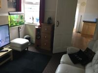 Single Room Professional working Derby Centre all incl £85per wk