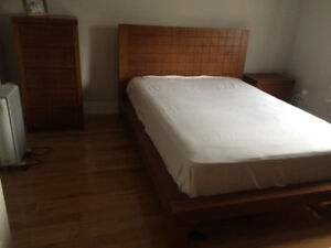 STRUCTUBE double bed frame and mattress
