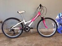 Girls Trek MT 220 mountain bike