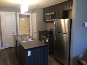 Basement suite for rent harbour landing- $900