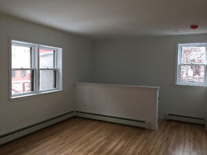 Newly Renovated Downtown One Bedroom
