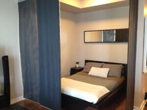 Short Term Fully Furnished Condo / Avail. December