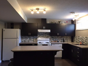 Basement Suite Sherwood Park Available Immedietly!