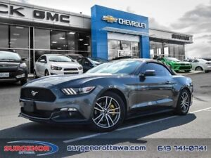 2015 Ford Mustang Convertible Ecoboost Premium  - $170 B/W