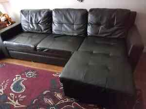 Awesome sectional couch with pullout bed option.