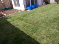Lush green lawn installation grading included