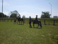 Horse riding for kids 4+yrs - Every weekend!!