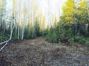 Killarney Bay Rd-149.77 acres located just north of Lindsay