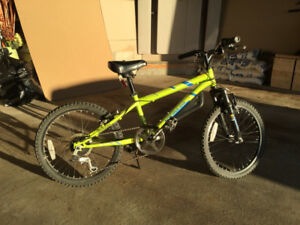 "Kid's 20"" Nakamura Mountain Bike"