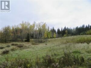 11 Acres of land with a drilled well. On Old Homestead Rd.